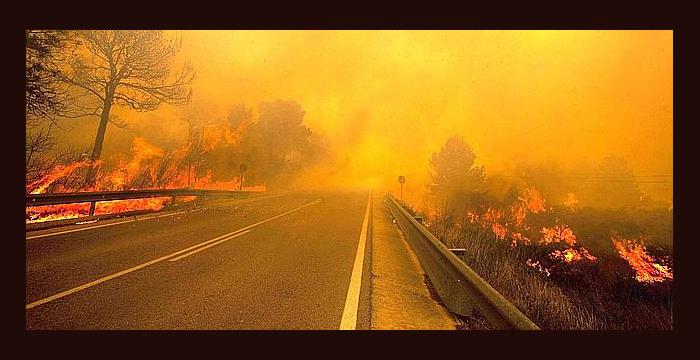 Consejos para conductores que se encuentren con un incendio en la carretera