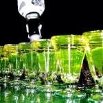 ¿Se puede engañar al alcoholímetro?