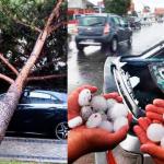 Granizo, inundaciones, caída de un árbol… ¿Quién cubre los daños del coche?