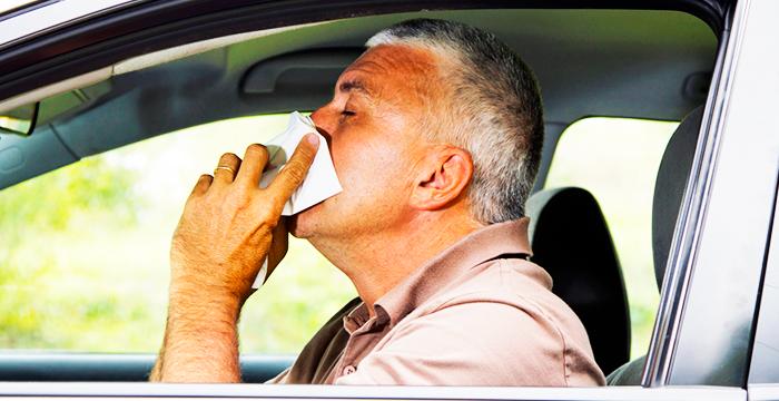 La alergia primaveral al volante y sus consecuencias