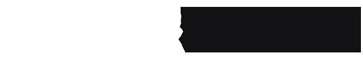 Drive Smart logo